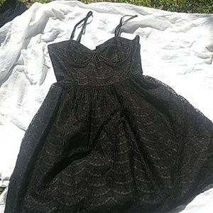 American rag scalloped lace dress